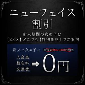 20190308_ニューフェイス割引_640-640